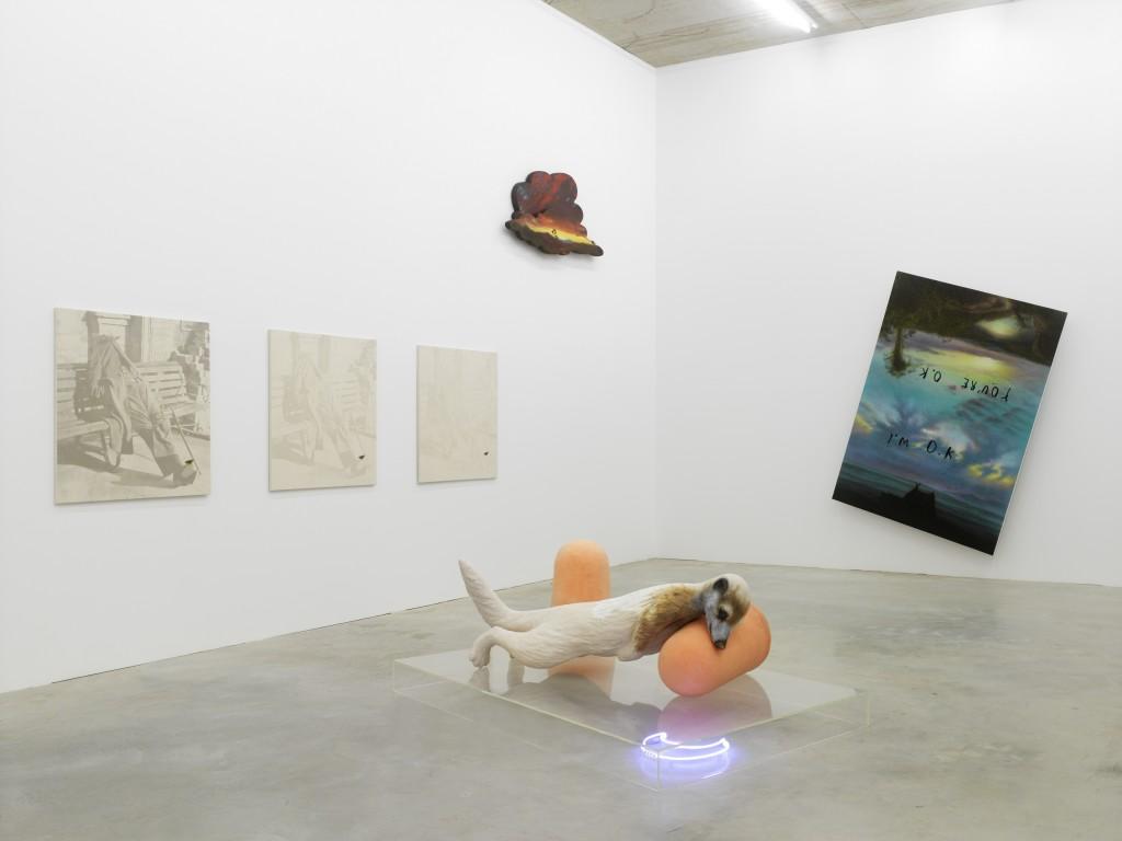 Installationsansicht Friedrich Kunath: Juckreiz, Sammlung Philara, Düsseldorf, 2016, © der Künstler und BQ, Berlin, Photo: Achim Kukulies